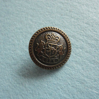 2.5cm button ,plastic button ,carved ,MOQ is 100pcs , free shipping