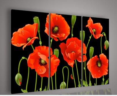 3 Piece Pintura Mural Art No quadro abstrata moderna acrílico flor vermelha da papoila a óleo sobre tela Para Casa(China (Mainland))