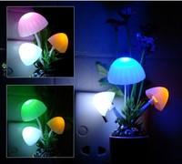 Dream photoswitchable mushroom lamp middot . chrysanthemum creative night light wall lamp decoration lamp advertising gift