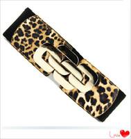 Hot selling 2013 Newest style Design Leopard Punk Rivet Chain Elastic  Belt And Cummerbunds For Women Free Shipping