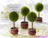 Free shipping Wedding Favors Green Potted Plants Place Card Holder For Green Theme Topiary Tree Place wedding decoration