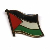 Unique cheap Palestine Single flag lapel pin--gifts or collection Free shipping (100pcs/lot)