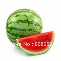 Farm melon - watermelon (seeds) vegetable watermelon seed 40 / Pack Home Garden - Free Delivery