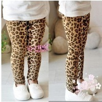 Free shipping 5pieces/lot  2013 New Spring & Autumn girls leggings children pants leopard kids pants