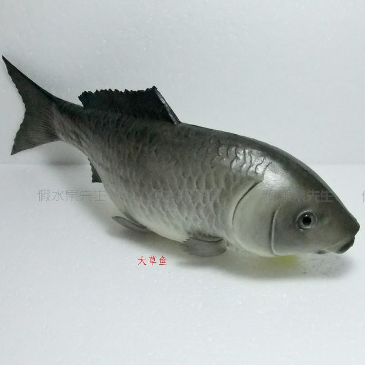 Katrinakaif sex org for Realistic fish pencil case