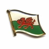 Free shipping(100pcs/lot)Wales Single flag lapel pin-Iron plated brass+Paints+epoxy+butterfly button-gifts or collection