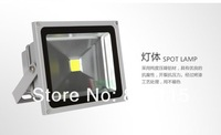 10 X retail sale Factory direct sale Free shipping 10W 20W 30W 50W 70W 100w led flood light AC85~265V LED Outdoor Lamp,10pcs/lot