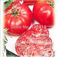 Watermelon Beefsteak Tomato 50 Seeds - Impressive!