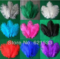 Wholesale 50PCS/LOT Quality Natural OSTRICH FEATHERS 10-12' inch Color Selection FREESHIPPING