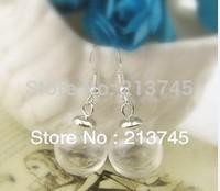 Free ship!!20sets/lot 16*4mm(opening) glass globe bubble & 6mm silver cap & Ear hook set DIY Glass ball vial earings pendant set