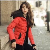Free shipping 2013 big size XXXXL  jacket women's plus size cotton-padded jacket outerwear women's jacket coat winter  coats