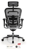 Alice Shop ergonor/comfort-seating EHS-HAM Standard network executive/computer chair / chair the whole network