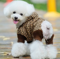 Autumn and winter kb split cotton-padded jacket pet clothes dog trousers wadded jacket