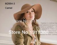 6pcs Classic 2014 Fashion Women Winter Wide Brim Wool Hats Lady Floppy Wool Felt Hat Womens Fall Big Cap Fedoras Caps Spring