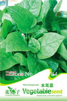 Free Shipping Red vinespinach seed vegetable seed