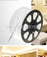 5M 60 LEDs/M 220 V 30 W 5050 Waterproof 220V LED Strip + Controller
