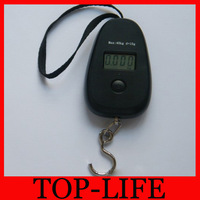 Portable Electronic Scale 40kg Household Scales manufacture Egg Scale With Backlight