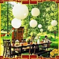 "Free Shipping 10pcs/lot 12 "" 30cm Multicolour Fashion Paper Lantern Wedding Decoration Paper Lantern"