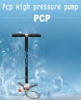 Free shipping High pressure pump 30MPA  40MPA  Pcp B50 Airforce condor