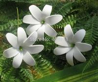 NEW ARRIVAL ! 8KL219  FREE SHIPPING  HOT SALE+300PCS 8-8.5CM FOAM TIARE  FLOWER W STEM+ MIXED COLORS  HAWAIIAN FOAM FLOWER