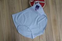 Free Shipping! 10pcs/lot Ladies Seamless Panties Underwear Woman Briefs L, XL, XXL, XXXL