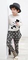 2013 Autumn New Style Children's Clothing T-shirt+Harem Pants 2pcs set Unisex Kids Casual Suit 2Colors Free Shipping