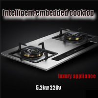 High quality smart cooktop embedded gas cooktop double cooktop gas stove cooker 5.2kw 220v