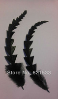 Wholesale!50Pcs/Lot 18-25cm Feather Stripped Coque Fish Bone Bunch - Black - Craft Millinery Fly Fishing