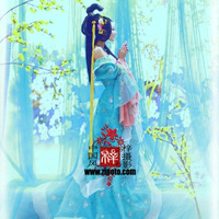 Cos costume clothing tang suit hanfu plate dream costume