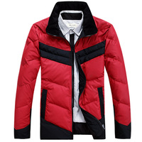 2013 men's clothing down coat SEPTWOLVES down coat male casual down coat high quality stand collar down coat