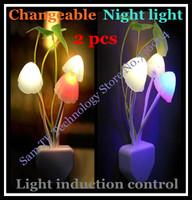 Free shipping 2 pcs light control sensor plug switch wall night light Mushroom lamp led changeable bulb children toys gift 220V