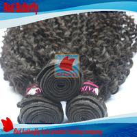 Brazilian Curly Virgin Hair,Unprocessed Deep Curly Hair Extension,4pc Lot Natural Black Human Hair Weave,Brazilian Deep Wave