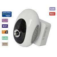 WIFI Wireless IP Camera IR Night Vision Motion Detection Camera Dual Audio Cam