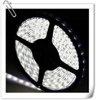 200Meters New 3528 SMD Warm White/cool white/blue Flexible LED Strip 300 LEDs 60 LEDS/M IP20 Non-waterproof