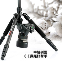 Sinno F3425Z carbon fiber ball head professional tripod