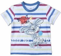 Boys lovely T-shirt with embroidery CA1323#