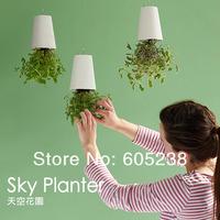 Sky Planter Upside-Down Plant Pot Novelty Gift