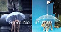 Wholesale - HOT Pet umbrella dog umbrella pet raincoat dogs raincoat rope dog collar