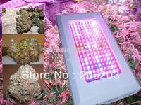 Free shipping 450W LED Growing Light 144X3W hydroponics indoor plants 7 band 630nm+660nm+460nm+440nm+12000k+380nm+730nm+610nm