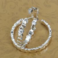 E284 Wholesale 925 silver earrings, 925 silver fashion jewelry, fashion earrings
