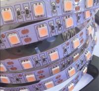 led strip light  led lights  5050led 300leds,5m/reel12V LED Flexible  waterproof IP65 strip lights