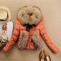 2013 autumn winters more authentic new big raccoon collars cultivate one's morality short down jacket