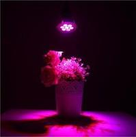 CREE 3*5W LED Grow Plant Lamp Lighting For Flowers Plant E14 85-265V Hydroponics 15W LED Plant Grow Lights Led Spot Lights DHL
