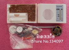 popular diy electronic