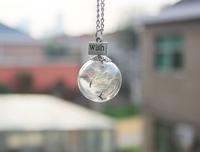 8pcs 25MM Dandelion Real Seed Hand Blown Glass Bulb Wish Necklace, Dandelion Seed Necklace Dandelion Necklace GGJ-GJN-034