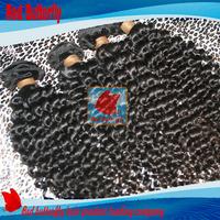 burmese virgin hair indian human hair weft kinky curly hair weaves 5bundles virgin hair extensions free shipping by epacket