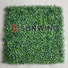 cheap grass for garden