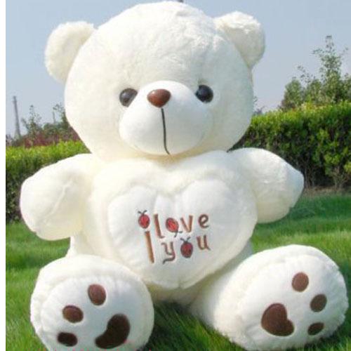 Cute Giant New Giant Plush Cute Teddy
