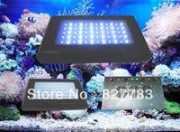 60*3w Free shipping 180w Dimmer LED Aquarium Lights 30blue+30White 2pcs/lot Two Switch Two plug led aquarium light