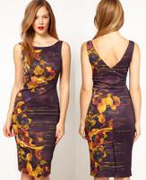 Summer ladies new fashion 2014 brand designer sexy thin print sleeveless tank dress OL outfit elegant slim dresses plus size